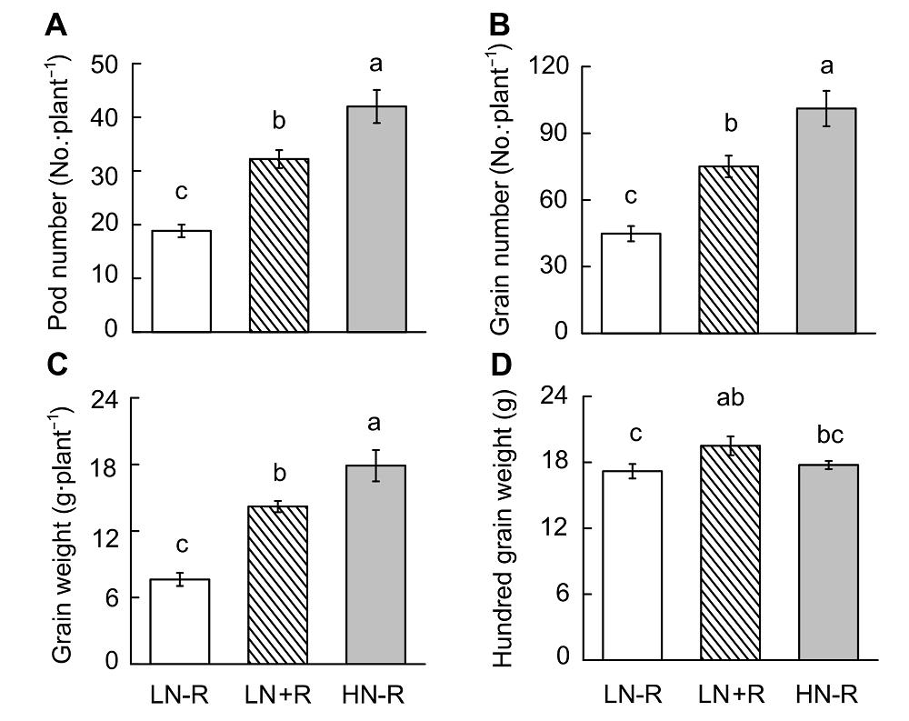 An Efficient Nutrient Solution System to Study Symbiotic Nitrogen